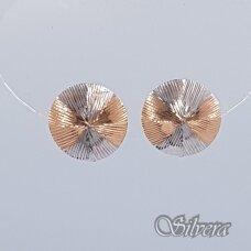 Auksiniai auskarai AU168