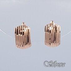 Auksiniai auskarai AU202