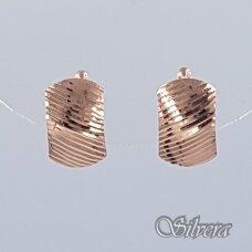 Auksiniai auskarai AU204