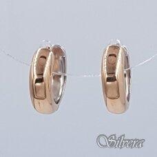 Auksiniai auskarai AU292