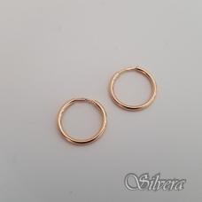 Auksiniai auskarai AU63
