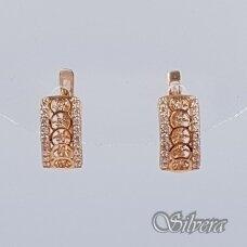 Auksiniai auskarai su cirkoniais AU190