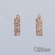 Auksiniai auskarai su cirkoniais AU254