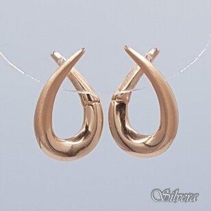 Auksiniai auskarai AE29