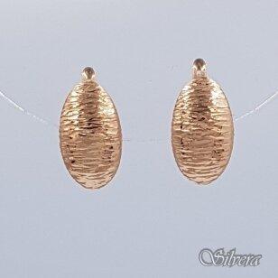 Auksiniai auskarai AU175
