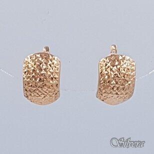 Auksiniai auskarai AU182