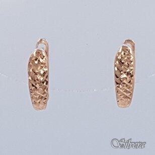 Auksiniai auskarai AU351
