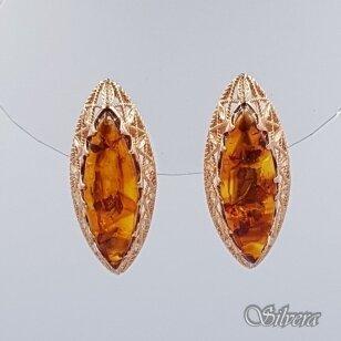 Auksiniai auskarai su gintaru AU452