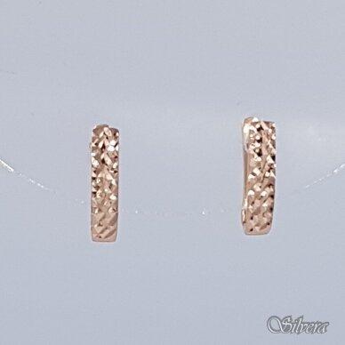 Auksiniai auskarai AE19