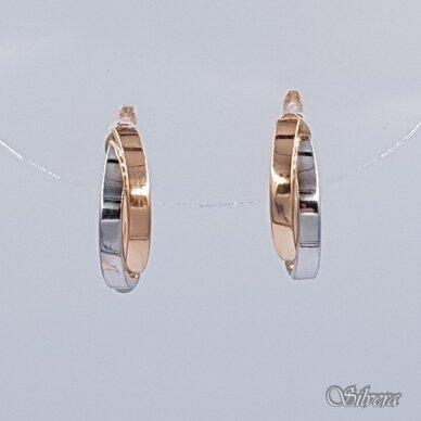 Auksiniai auskarai AE25
