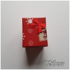 Dovanų dėžutė D48