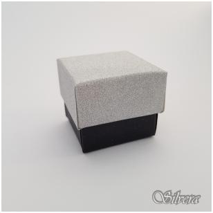 Dovanų dėžutė D11